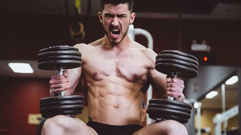 muscle diets increase sales 200%